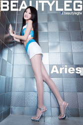 BEAUTYLEG 1106 Aries